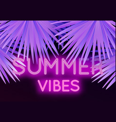 colorful modern with neon lettering summer vibes vector image