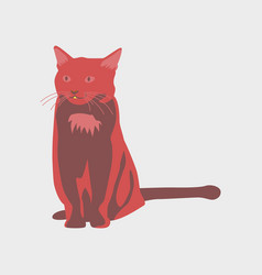 In flat style cat vector