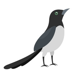 Magpie thief icon flat style vector