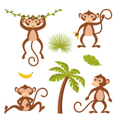 set isolated monkey with plants vector image