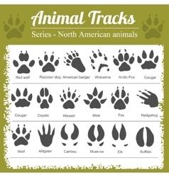 Animal Footprints - North American animals vector image vector image