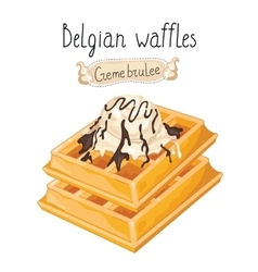 Belgian waffles with ice cream on white background vector image