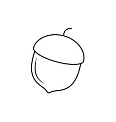 acorn outline icon vector image