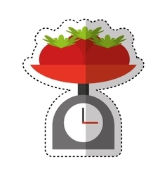 Balance with tomatoes isolated vector