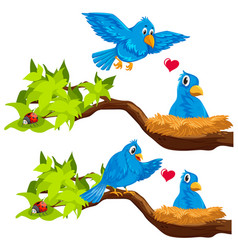 Blue birds in the nest vector