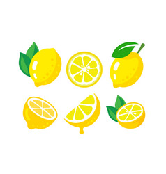 fresh lemon fruits vector image