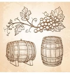 Grape branches and barrels vector