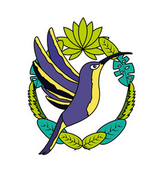 Hummingbird bird leaves tropical vector