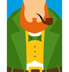 Leprechaun in yellow vest Green old frock coat vector image