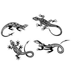 Lizard reptiles vector image