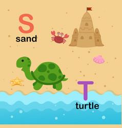 alphabet letter s-sand t-turtle vector image vector image