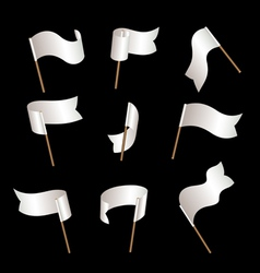 Flagset white vector image vector image