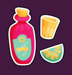 mexican tequila set vector image