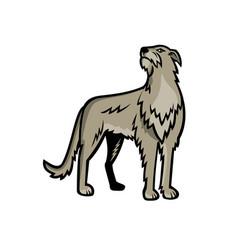 Scottish deerhound dog standing mascot vector