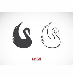 two swan design on white background wild animals vector image
