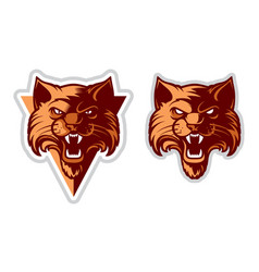 Wildcat head logo vector