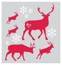 Raindeer Christmas with snowflake vector image vector image