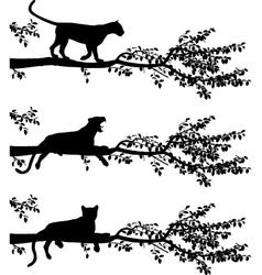 Tree leopard vector image vector image