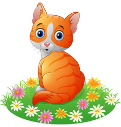 cartoon cat sitting on the grass vector image