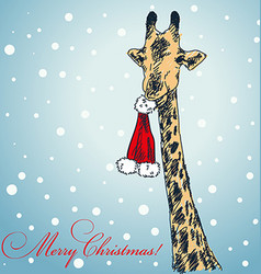 Christmas Animals Africa Vector Images