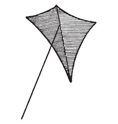 Eddy tailless kite vintage vector