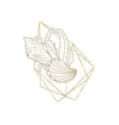 marine sea shell line art golden frame wreath vector image