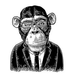Monkey businessman in suit tie rectangular vector