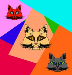 Multi-colored muzzle cats vector
