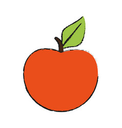 Peach or apricot icon image vector