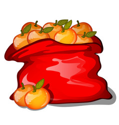 red bag filled with ripe tangerines isolated on vector image