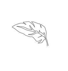 single continuous line drawing tropical leaf vector image