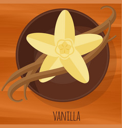 vanilla flat design icon vector image