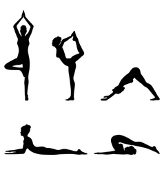 Woman in Yoga Pose Set Isolated on White vector