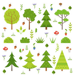different forest plants trees mushrooms and other vector image vector image