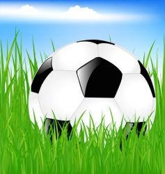 Classic soccer ball in grass vector