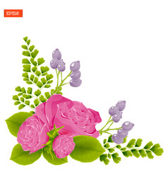 Corner composition pink rose flowers with leaves vector