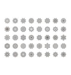 Floral mandala pattern unusual flower shape vector