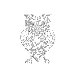 hops and barley owl celtic knotwork vector image