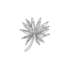 one single line drawing tropical leaf plant vector image