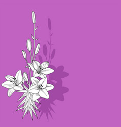 Purple drawing lily background vector