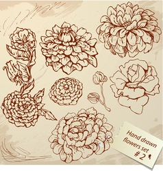 Set of Vintage Realistic graphic flowers - hand dr vector image