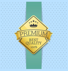 best quality 100 golden label premium choice vector image