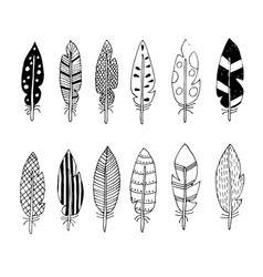 feathers with abstract drawings vector image