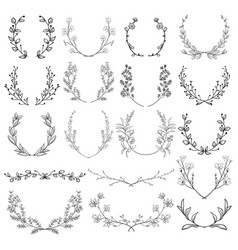 Herbs plants and flowers branches laurels vector