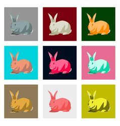 Set of in flat style rabbit vector