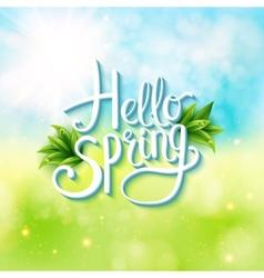 Welcoming springtime - hello spring vector