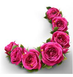 roses flowers festive border congratulation best vector image vector image