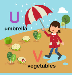 alphabet letter u-umbrella v-vegetables vector image
