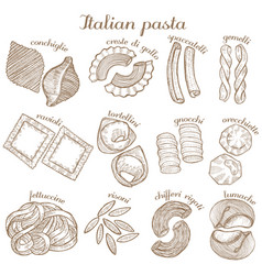 set of different pasta shape vector image