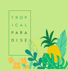 abstract tropical banner summer background vector image